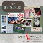 2012 Portrait Holiday Cards + Fredericksburg, Kerrville, & Texas Hill Country