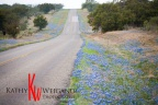 2014 Texas Hill Country Bluebonnet Report, Wildflower Sightings by Hill Country Images ™, Central Tx,  Fredericksburg Tx Photographer