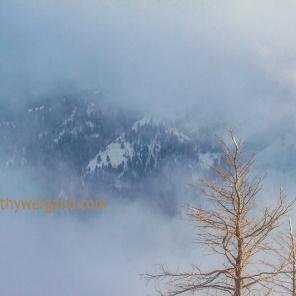 Ski Apache New Mexico