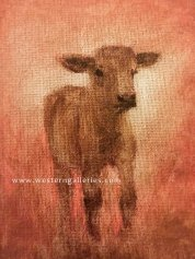 "SOLD ""Calf Study"" oil"