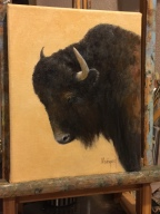 New oil painting, Bison Portrait.